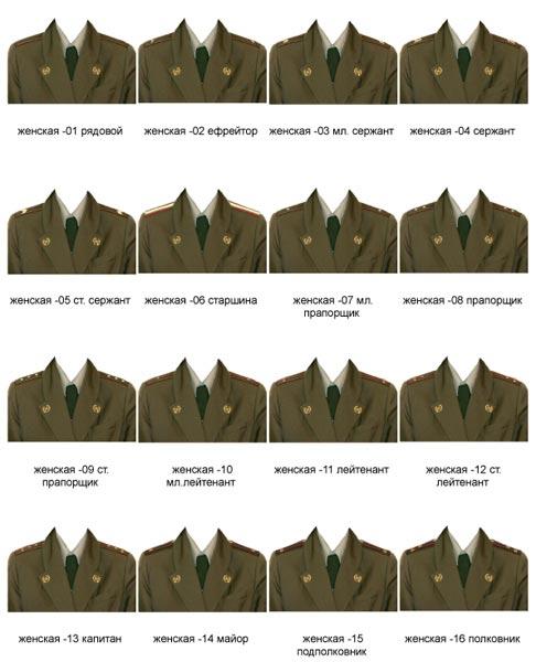 шаблоны скачать форма мотострелковые войска
